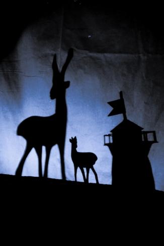 Deer in Northern light